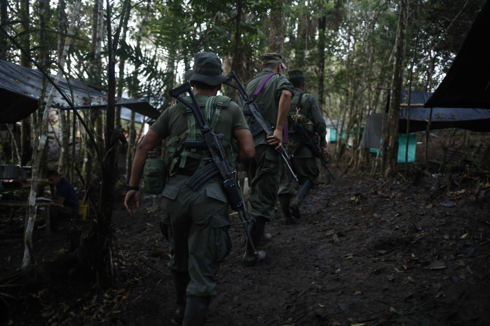 Los guerrilleros están concentrados en El diamante, en las selvas del Yarí en COlombia
